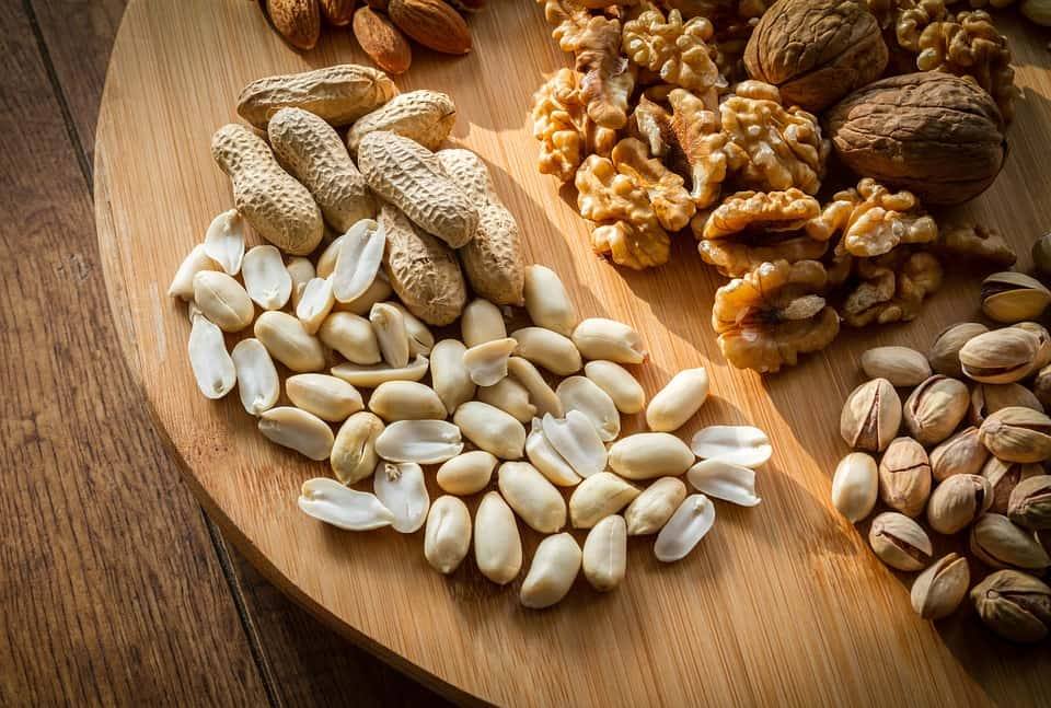 ketogenic diet nuts protein