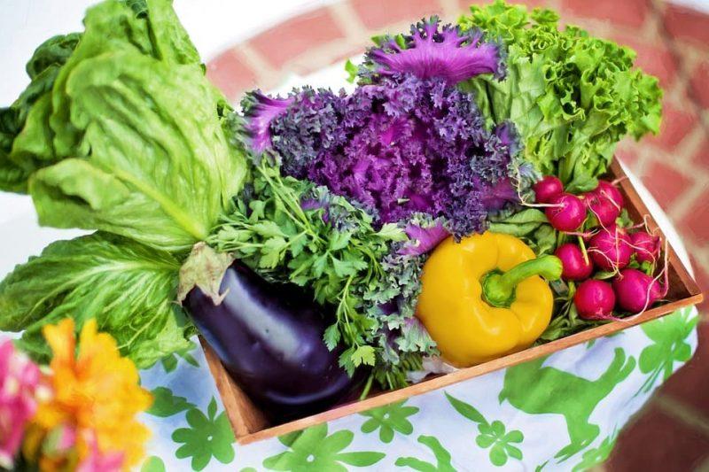 Keto for Vegans & Vegetarians