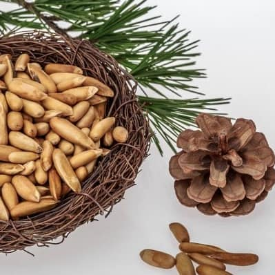 The Best Nuts to Eat on a Keto Diet